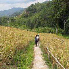 2-Day Cross Border Trek To Indonesia & Remote Highland Villagestay (H3)
