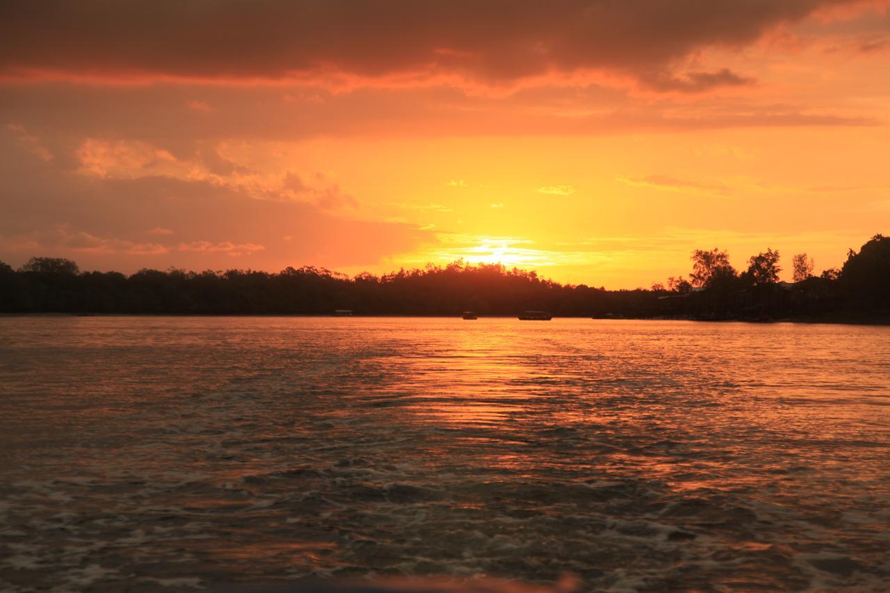 Wetlands Wildlife Evening Cruise (W3)