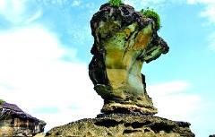 Bako National Park Day Trip (H1)