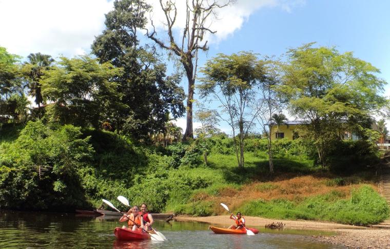 Sarawak Rainforest: Kayak & Orangutan Discovery (K2)