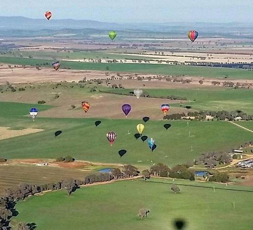 FLIGHTS at CANOWINDRA CHALLENGE and FESTIVAL