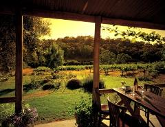 Clare Valley Full Day Private Wine Tour