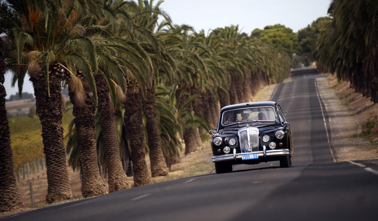 Barossa Full Day Private Wine Tour in a 1962 Daimler