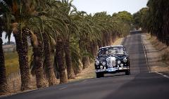 Barossa Full Day Private Wine Tour in a 1962 Daimler