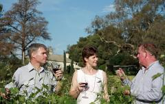 Sensations Full Day Adelaide Hills Tour