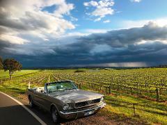 Barossa's Best - Mustang Tour, 5.5hr