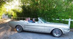 Barossa's Best - Mustang Tour, 7hr