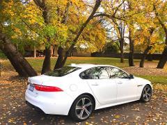 Barossa Uncut - Luxury Jaguar, 3.5hr