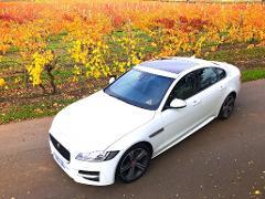 Barossa's Best - Luxury Jaguar Tour, 5.5hr