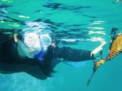 Snorkel with Sea Dragons & Entry to Peninsula Hot Springs