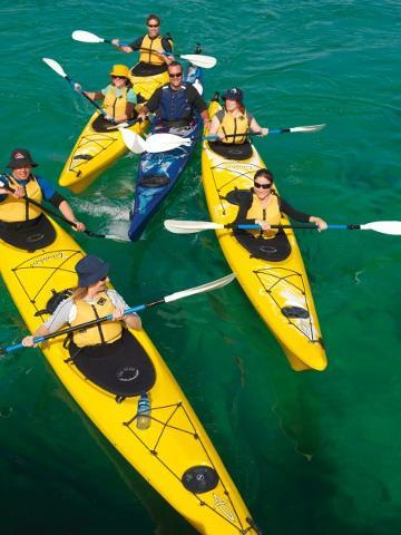 Sea Kayaking Tour - Dolphin Sanctuary (2 People)