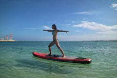 SUP Board, Kayak or Hobie Eclipse Full Hour - Exmouth
