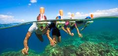 Guided Jet ski and Snorkel tour on the beautiful Reef - Morning Session