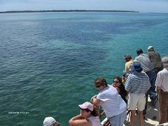 Brisbane to Gold Coast 300 Islands sheltered water cruise-Northshore Hamilton departure