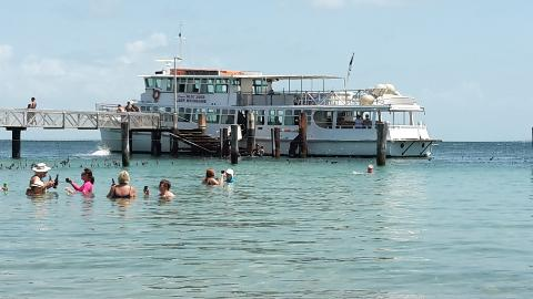 Moreton Bay Day Cruise