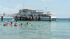 Moreton Bay Day Cruise from Newstead