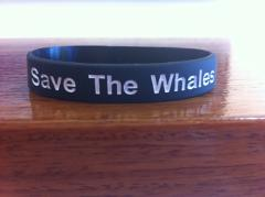 Save the Whales Wristband
