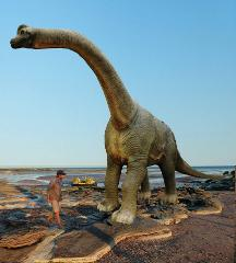 Scenic & Prehistoric