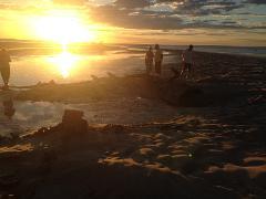 Sunset Tour (Flying Boat Wrecks)