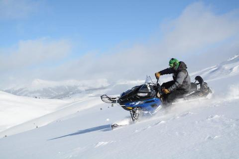 WHITE MOUNTAIN TWO-HOUR HIGH ADVENTURE SNOWMOBILE  TOUR, Guide Gratuity of $35 is not incuded in the tour price.