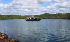 Morning Eco Rainforest River Cruise
