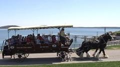 45 minute Historic Downtown horse drawn carriage tour