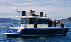 6 Passenger All Day Ecosystem, Wildlife & Whales  - Snug Harbor Resort, West Side Friday Harbor, San Juan Island Departure