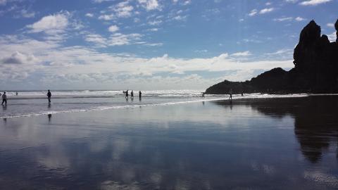 West Auckland -  Piha & KiteKite Falls Tour