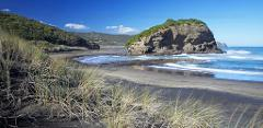 West Auckland -  Bethells Beach & Lake Tour