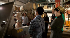 Yarra Valley Private Group Tour