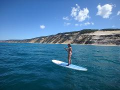 Stand Up Paddle Wildlife Tour & Beach 4x4 Day Trip- Noosa
