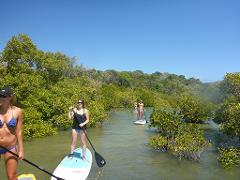 Stand Up Paddle Lesson Eco Tour 2 Hour - Rainbow beach