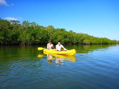 Turtle View Kayak Tour - Rainbow Beach
