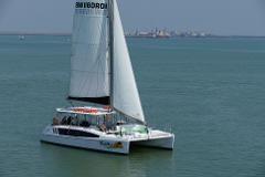 Sun, Wed, Fri sunset eco sailing 3 hr with Nibbles Plates, BBQ meal and free drinks