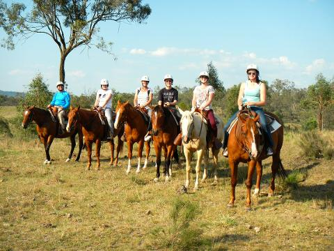 2 Hour Trail Ride - Toowoomba Clubhouse Only