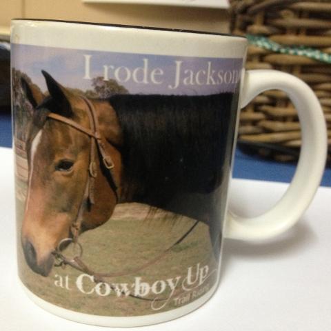 Souvenir Horse Mugs
