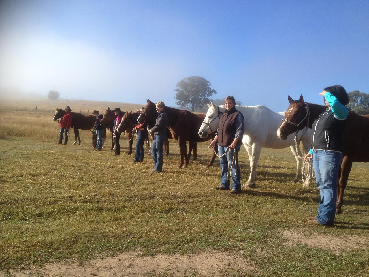 Beginner Rider Horsemanship Clinic