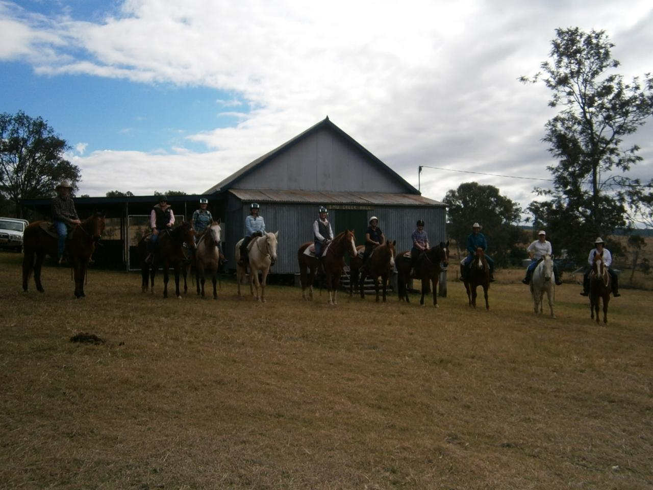 1/2 Day Hall Ride - Intermediate & Experienced Riders