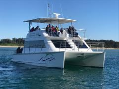Fish and Chip River Cruise with Dolphin Spotting