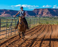 Learn the Basics of Western Horsemanship