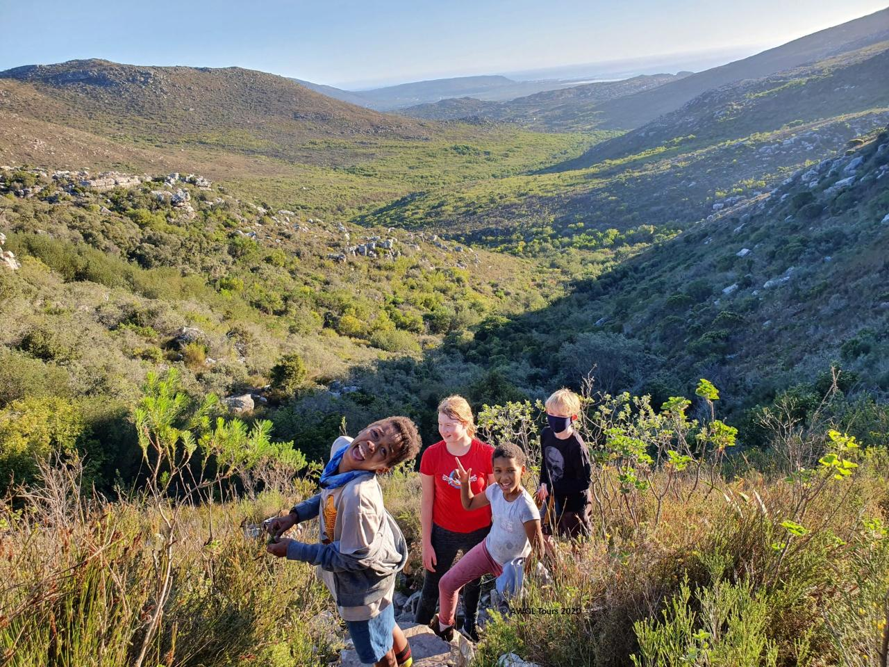 Educational nature walks and hikes