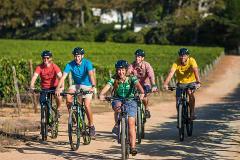 Winelands Constantia mountain biking