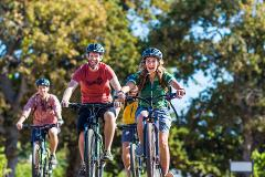 Winelands cycling tours
