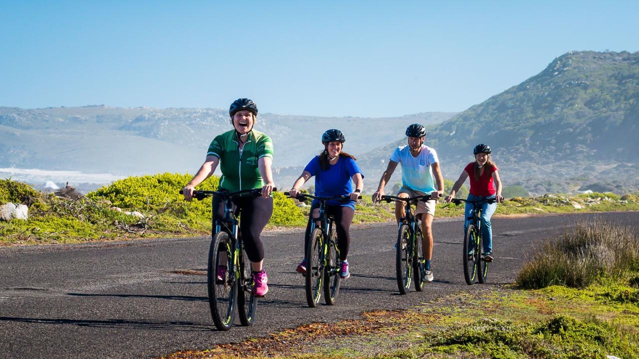 Cape Point cycling tour