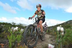 Mountain biking tours in Cape Town half day