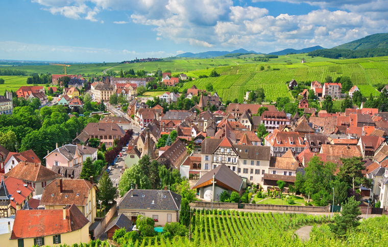 GRANDS CRUS ALSACE WINES PRIVATE TOUR FROM COLMAR