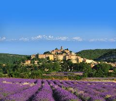 LAVENDER TOUR HALF DAY FROM AIX EN PROVENCE