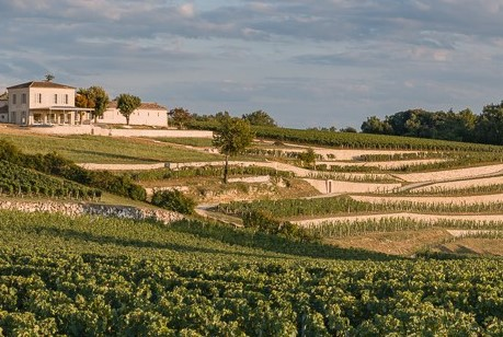 SAINT EMILION FULL DAY SHARED WINE TOUR FROM BORDEAUX