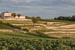 SAINT EMILION WINE TOUR FULL DAY TRIP FROM BORDEAUX