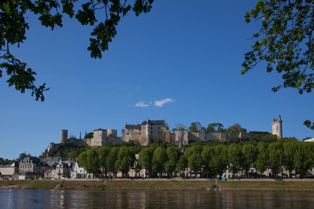 ROMANTIC CASTLES & DELICIOUS WINES OF THE LOIRE VALLEY  FROM TOURS